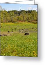 Swamp After Drout Greeting Card