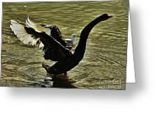 Swan Dance 2 Greeting Card
