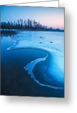 Swan Greeting Card by Davorin Mance