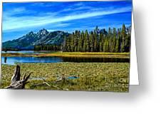 Swan Lake II Greeting Card