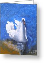 Swan Lake Greeting Card by Julie Sauer