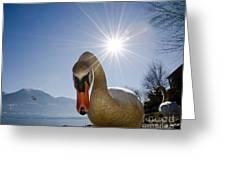 Swan Saying Hello Greeting Card