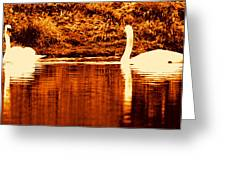 Swan Song 4 Greeting Card