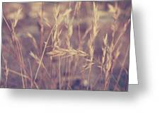 Swaying In The Soft Summer Breeze Greeting Card