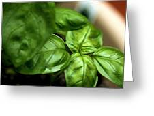 Sweet Basil From The Garden Greeting Card