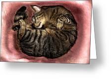 Sweet Dreams 2 Greeting Card