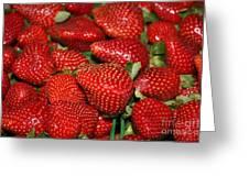 Sweet Florida Strawberries Greeting Card