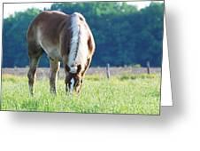 Sweet Grass Greeting Card
