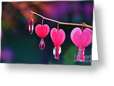Sweet Hearts Greeting Card
