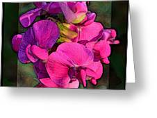 Sweet Pea Pop Out Photoart Square Greeting Card