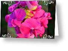 Sweet Pea Pop Out Square Greeting Card