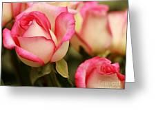 Sweet Roses Greeting Card