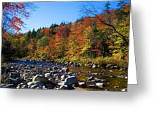 Swift River In Autumn Greeting Card
