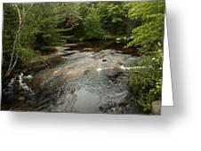 Swift River Greeting Card