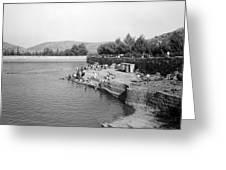Swimming Resort  Greeting Card