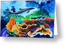 Swimming With The Dolphins Greeting Card