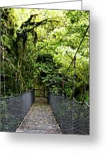 Swingbridge Greeting Card