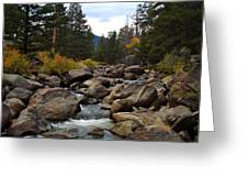 Tahoe Creek Greeting Card