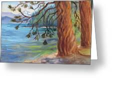 Tahoe Light Sugar Pine Point State Park Greeting Card