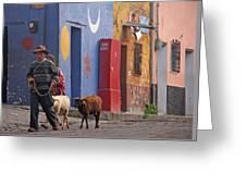 Taking Sheep To Market At Chichicastenango Greeting Card