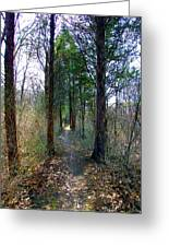 Taking The Long Trail Greeting Card