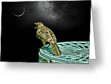 Talking To The Moon Greeting Card