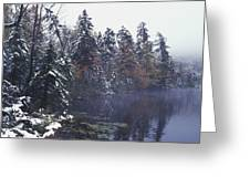 Tall Pines By A Lake Greeting Card by David Chapman