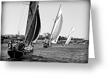 Tall Ship Races 2 Greeting Card