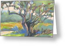 Tangled Tree Greeting Card