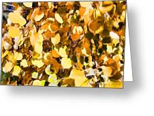 Taos Gold Iv Greeting Card