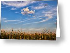 Tassels And Sky Greeting Card