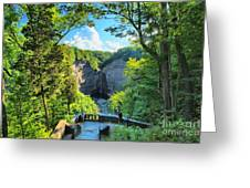 Taughannock Falls Overlook Greeting Card