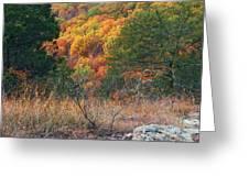 Taum Sauk Mountain Glade IIi Greeting Card