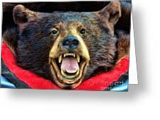 Taxidermy -  Black Bear Greeting Card