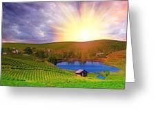 Tea Plantation Greeting Card