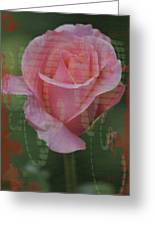 Tea Rose - Asia Series Greeting Card