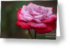 Tears From Heaven Greeting Card