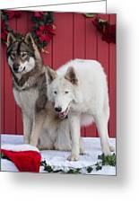 Tehya And Chenoa's Christmas Greeting Card