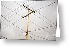 Telephone Pole And Electric Cables Greeting Card