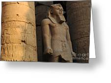 Temple Of Luxor  Egypt Greeting Card