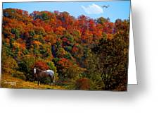 Tennessee Fall Greeting Card