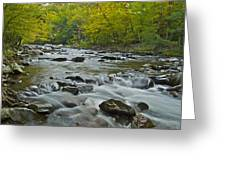 Tennessee Stream 6031 Greeting Card