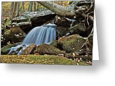Tennessee Waterfall 5962 Greeting Card