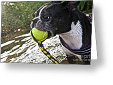 Tennis Ball Mist Greeting Card