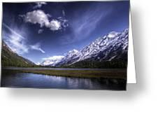 Tern Lake Greeting Card