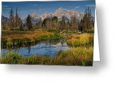 Teton Fall Greeting Card