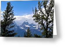 Teton Through The Trees Greeting Card