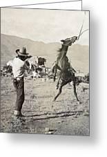 Texas: Cowboy, C1910 Greeting Card