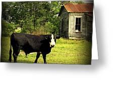 Texas Lawn Mower Greeting Card