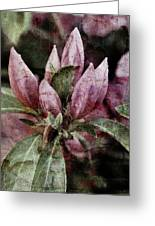 Textured Blooms 1 Greeting Card